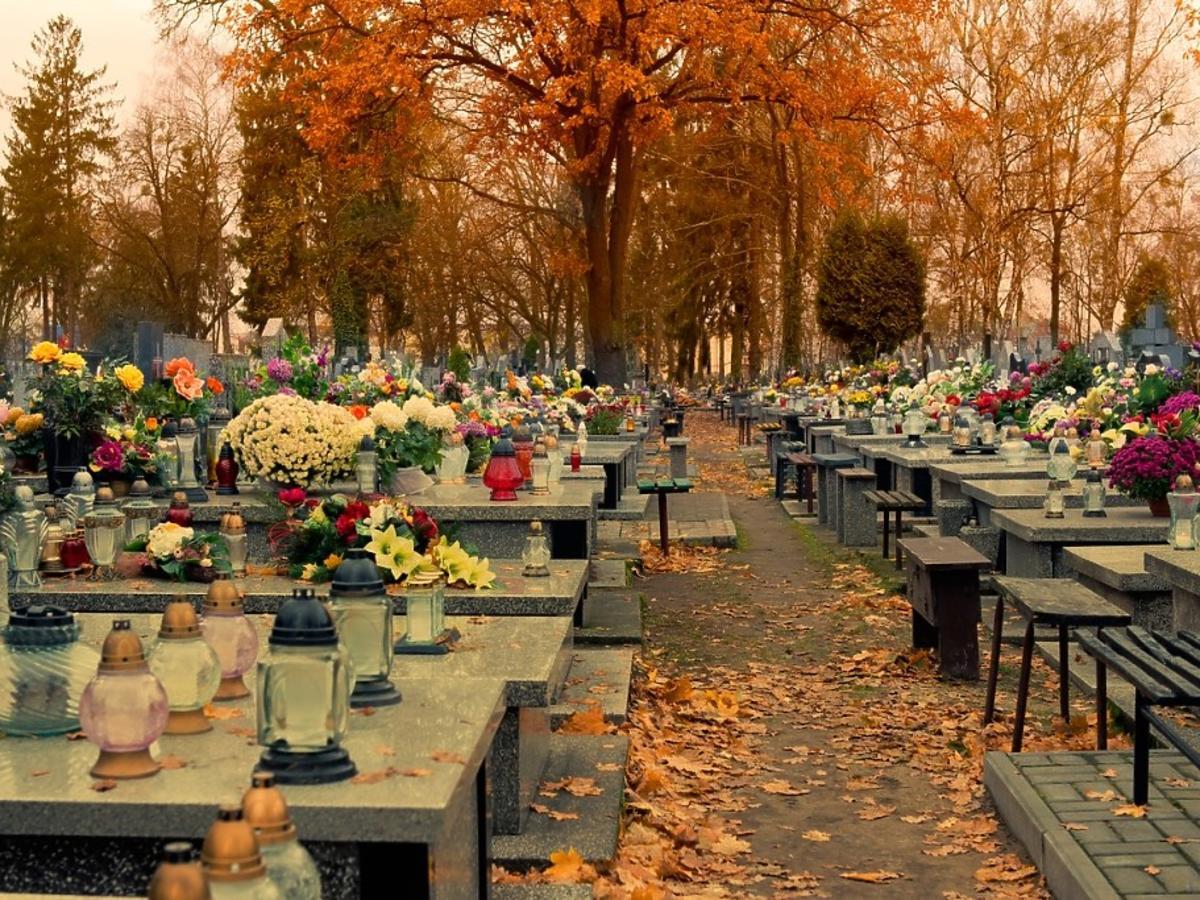 cmentarz 1 listopada
