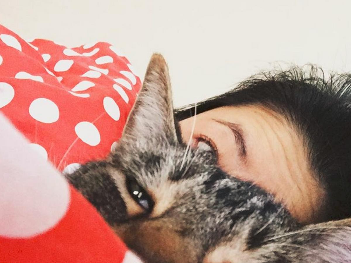 dziewczyna ze zmarszczonym czołem leży w łóżku z kotem