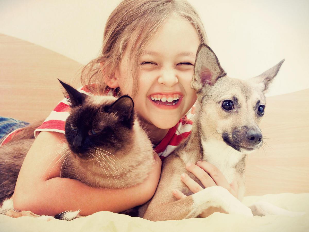 Jakie zwierze dla dziecka