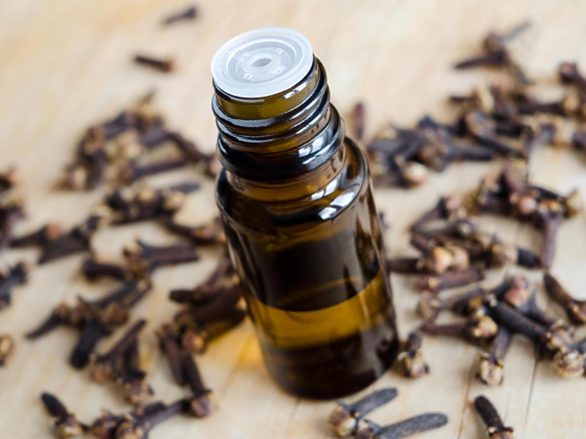 olejek goździkowy właściwości jak go używać cena trądzik grzybica łupież