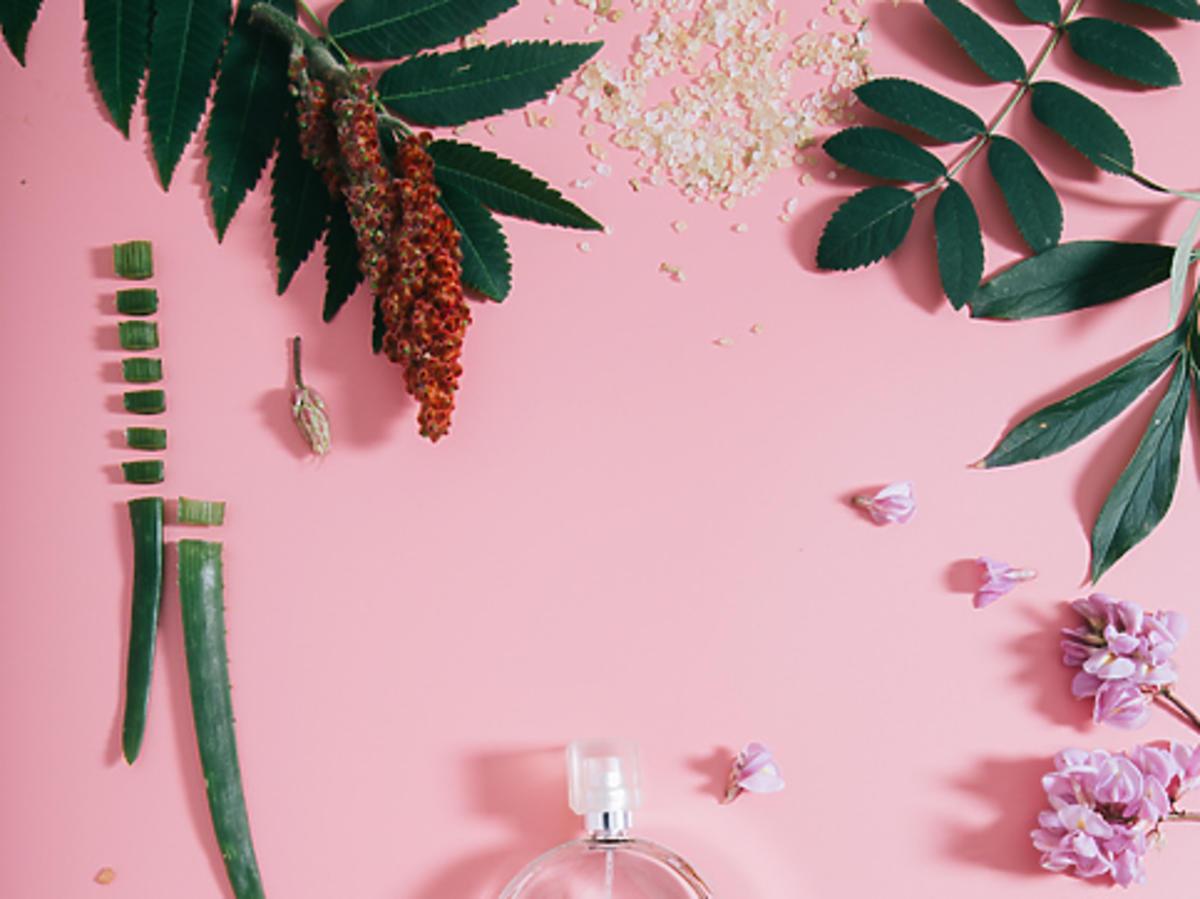 Perfumy Calvin Klein Euphoria Blossom w promocji w Rossmannie