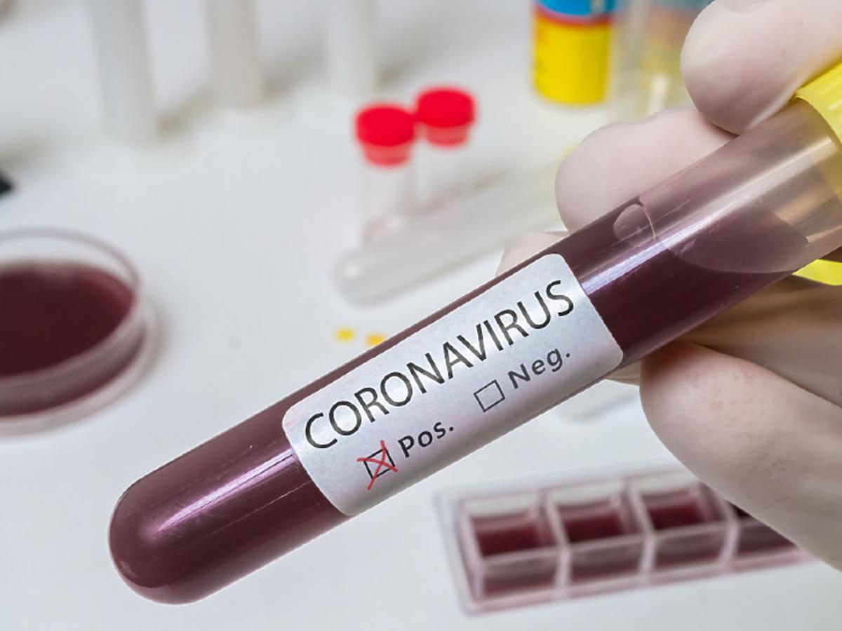 polski lek na koronawirusa