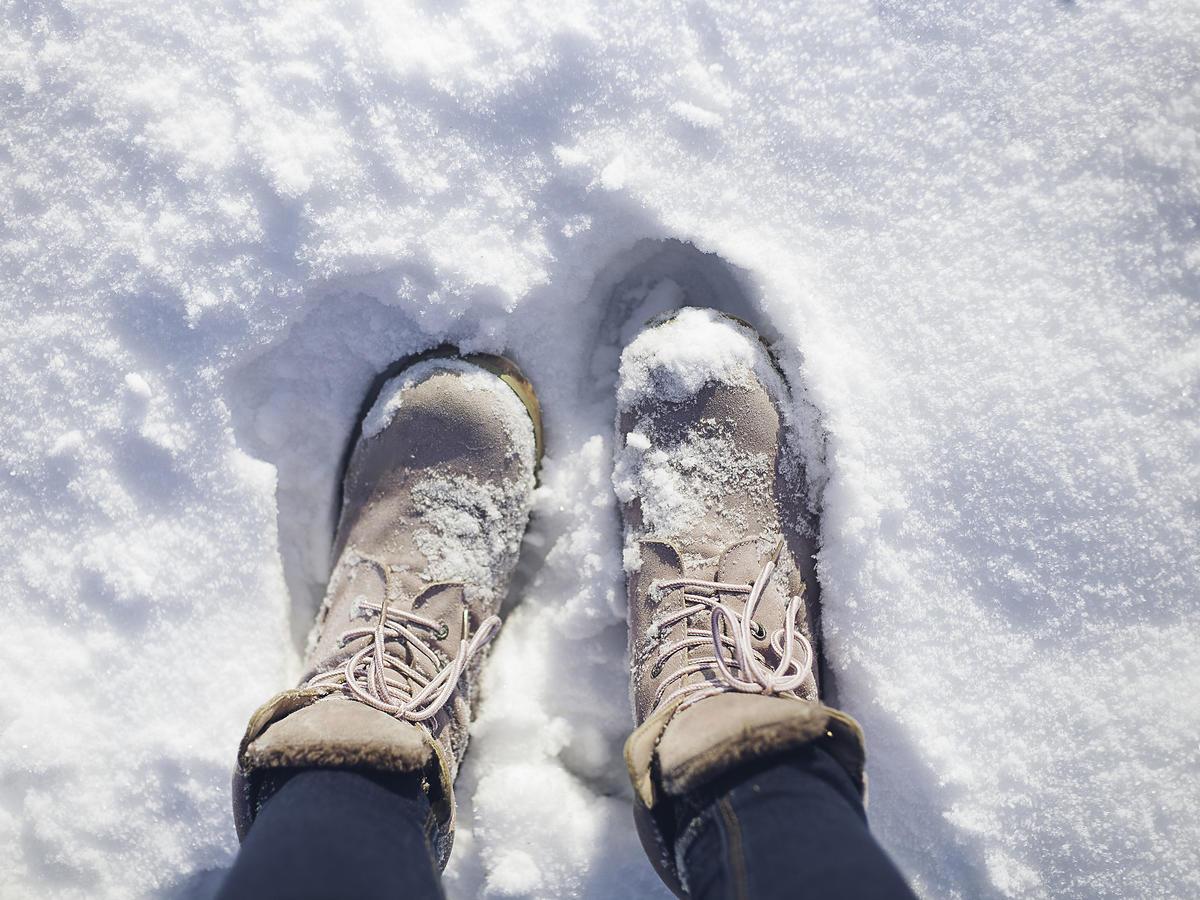 śniegowce z Lidla