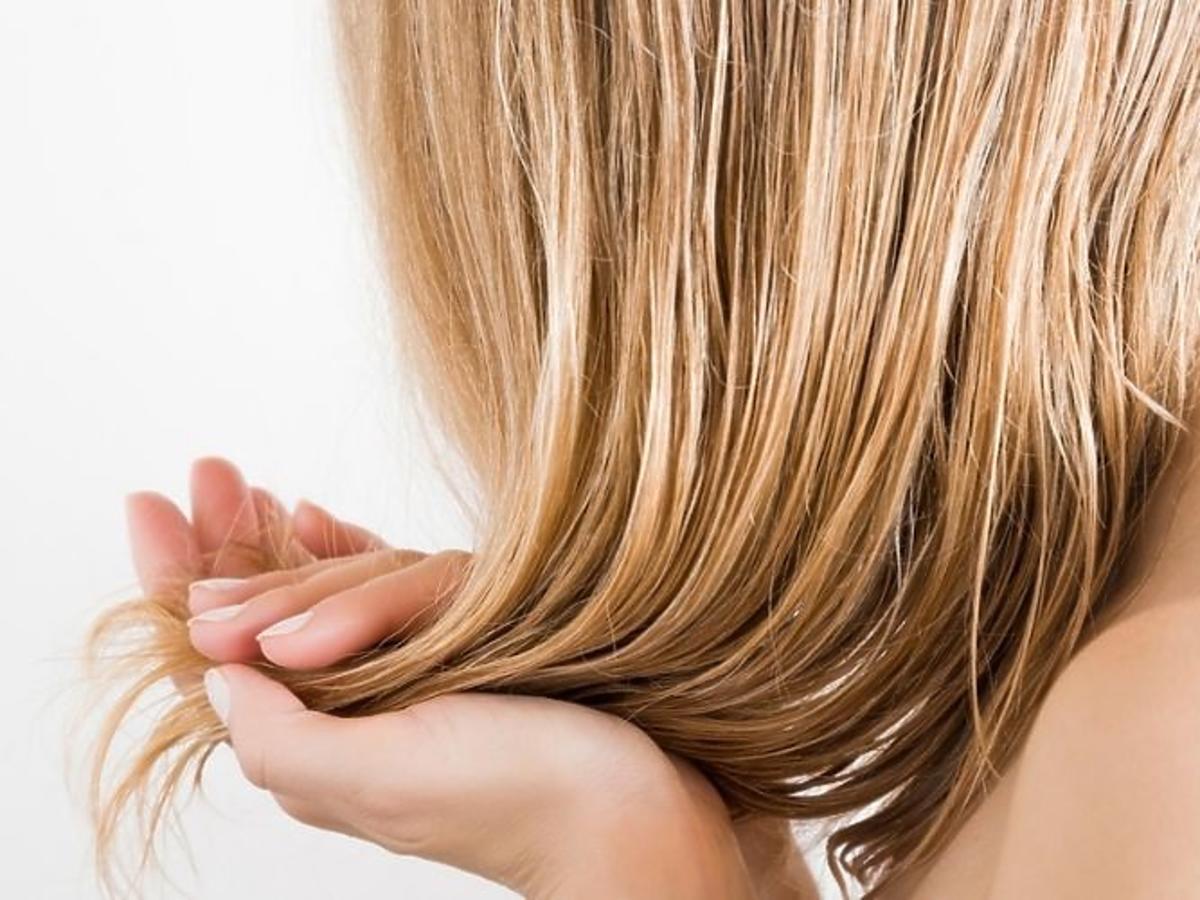 Suche włosy przed użyciem szamponu nawilżającego Panetine